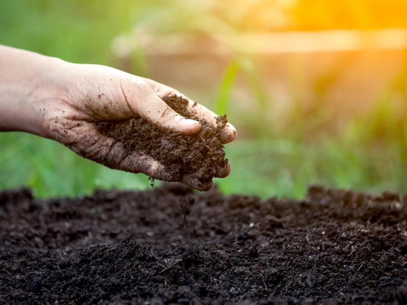 Soil_health_conservation