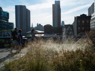 Urban conservation