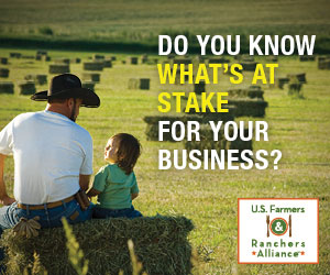 Do You Know What's at Stake for Your Business?