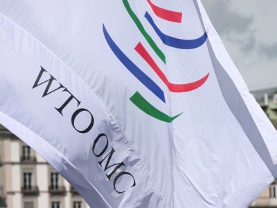 Wto flag