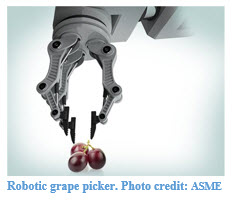 Robot Grape Picker