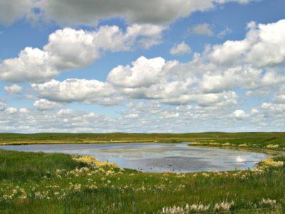 Missouri wetland